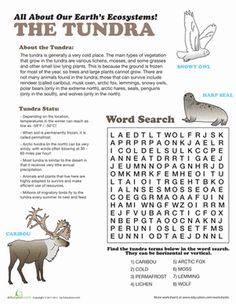 This worksheet is all about the tundra. Give your student some fun facts and reading about the ecosystem of the Arctic.