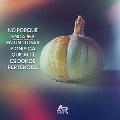 Romanos 12:2 (NVI) No se amolden al mundo actual sino sean transformados mediante la renovación de su mente. Así podrán comprobar cuál es la voluntad de Dios buena agradable y perfecta. #arteradikalparajesus #arteradikal #ARPJ