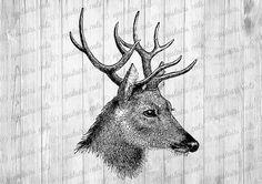 Vintage Deer Head Graphics Clipart  - Printable Image