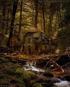 Old mill - black forrest, germany