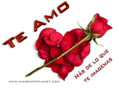 The perfect Te Amo Animated GIF for your conversation. Discover and Share the best GIFs on Tenor. Love Images, Valentines, Fruit, Beautiful Hearts, Youtube, Bb, Gifs, Romance, Facebook