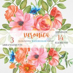 VERONICA Watercolor Flower Clipart Orange Floral by PatishopArt