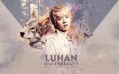 EXO-M LuHan Cute Werewolf Boy HD Wallpaper
