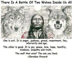 Native American Quote on Where You Put Your Energy