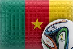 Camarões na Copa 2014 #futebol