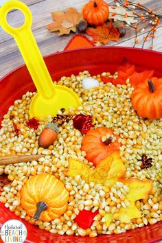 Fall Sensory Bin for Toddlers and Preschoolers, A Fall Sensory Bin is the perfect way for children to explore the fall season. Sensory activities are full of ways kids can learn about textures, sounds, smells, and colors. Easy fall sensory idea for kids #sensory #sensoryplay #sensorybin #fallsensorybin #fallactivities #preschoolactivities #preschool #toddler