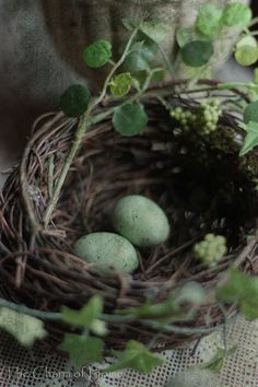 "voyagevisuelle: "" Rustic charming country nest ~ VoyageVisuelle ✿⊱╮ """