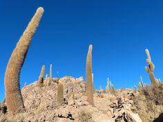 Bolivie - Sud Lipez - Uyuni : 3 jours inouïs posté dans Bolivie Trek légendaire en Bolivie Dates du séjour : du 9 au 11 juillet 2014