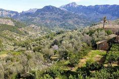 Dramatic #mountain views on the SIerra de Tramuntana #Mallorca