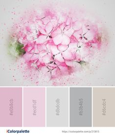 Color Palette Ideas from Flower Pink Petal Image Colour Combinations, Colour Schemes, Colours That Go Together, Colour Match, Pink Petals, Find Color, Colour Palettes, Yarn Colors, Color Pallets