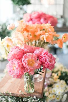 Gorgeous coral charm peonies: http://www.stylemepretty.com/living/2016/03/24/think-you-cant-make-your-own-spring-centerpiece-think-again/ | Photography: Matthew Land Studios - http://www.matthewland.com/