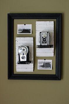 very cool vintage camera display