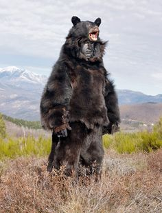 Europe's Wild Men They dress in bear heads and bells, and behave like beasts.
