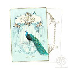 Notecards Decor Peacock Print Stationary Postcards