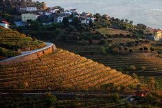 Porto Portugal, Beautiful Roads, Douro, City Photo, Places To Visit, Country, Amazing, Travel, Outdoor