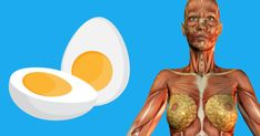 Here are the main 9 reasons why eggs should become a part of your diet: Excellent for pregnant women Eggs are rich in folic acid (vitamin which has been associated with prevention of neural tube defects Folic Acid, 2 Eggs, Vitamins, Shit Happens, Morning Coffee, Health Tips, Olinda, Get Lean, Loosing Weight