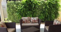 5 jardins verticais para casa