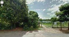 paisagem bucolica - Pesquisa Google