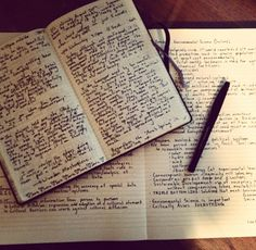 Journals, Planners, Multiples... Pen to the Paper