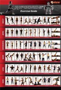 1000+ images about Fitness on Pinterest   Charts, Poster and Workout