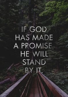 """""""If God has made a promise, He WILL stand by it."""" 