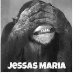 Jessas Maria Funny Weed Jokes, Cute Birthday Quotes, Funny Lyrics, Daily Jokes, Meme Pictures, Animal Habitats, Man Humor, Lyric Quotes, Really Funny