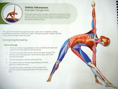Triangle pose helpful for improving symptoms of anxiety