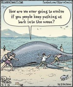 Science Humor | Evolution | From Google+