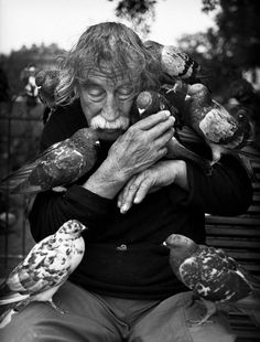 Le vieil homme et les oiseaux (The old man and the birds) by Pierre Belhassen. °