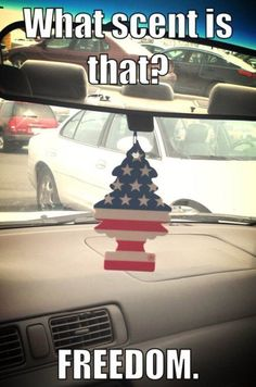 merica 9 Because Merica, thats why (25 photos)
