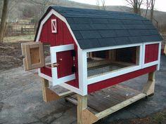 Barn Dual Rabbit Hutch. For the cavies