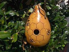 bird house gourds | Hand Painted Beehive Gourd Birdhouse. | Crafts-Gourds