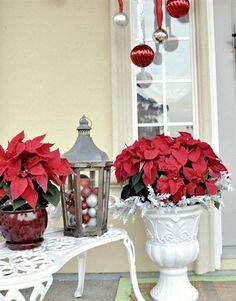 Arreglos navideños 2011 2012 | En rojo y blanco
