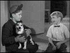 Lassie's Christmas Story (1958) Part 1/3 This is the sweetest little Christmas show ever! This is the way family programming used do be.  A must-see! We can keep our homes sweet with these trustworthy God-honoring programs. Christmas blessings to All!