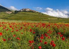 Castelluccio, Monti Sibillini | Sogno Italiano