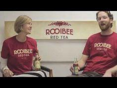 Rooibee Red Tea at Google