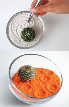 Modern Zen Gardens. I love this. That said, it wouldnt last long in my house. bummer haha