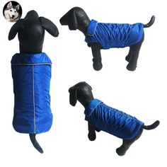 Cheap vest vest, Buy Quality veste waterproof directly from China vest for dog Suppliers: Spring Autumn Warm Waterproof Cloth Pet Vest With Delicated Reflecting Trim On collar And Back Dog Clothes For Small Dogs Dog Vest, Pet Fashion, Small Dogs, Pet Supplies, Harem Pants, Autumn, Warm, Pet Products, Pets