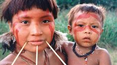 Yanomami adult and child The death of the forest is the end of our people https://www.rainforest-rescue.org/petitions/992/the-death-of-the-forest-is-the-end-of-our-people?mtu=86887378#cn=taf&md=social&sr=twitter via @RainforestResq