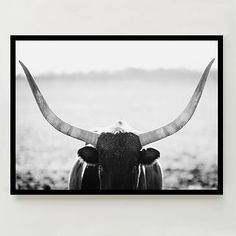 Minted for west elm - Staredown #westelm - for a Taurus