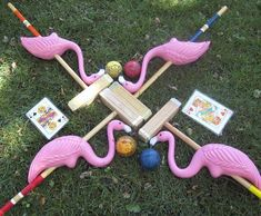Flamingo croquet!