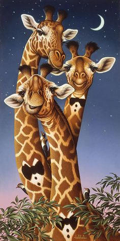 Braldt Bralds Giraffe in Papillon Giraffe Painting, Giraffe Art, Cute Giraffe, Zoo Animals, Animals And Pets, Funny Animals, Cute Animals, Wild Animals, Giraffe Pictures