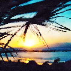 Evening on the Beach - A view of a beach with palm trees at sunset, Costa Adeje, Tenerife. Selective focus on the palm leaves. Mixed media - digitally processed photograph by Svetlana Imagineisle SVPhoto