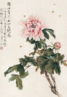chinese painting techniques of peony Chinese Painting Flowers, Peony Painting, Watercolor Flowers, Watercolor Paintings, Art Paintings, Painting Tattoo, Asian Flowers, Chinese Flowers, Japanese Flowers
