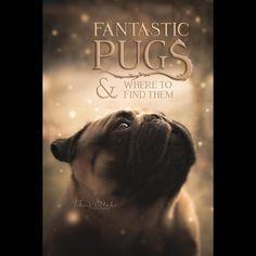 Thank you to our dear friends at @VikingMops! Check them out! ・・・⠀ #pug #pugpower #dogs #pugsnotdrugs #pugpuppy #puglove #cuteness #pugs #puglover #pugnation #dogstagram #dogsofinstagram #puppyeyes #pugstagram #pugworld #pugplanet #dogsofinstaworld #petstagram #instadog #instapug #babypug #pugsofig #pugsforever #pugoftheday #dogsofig #speakpug