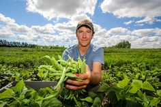 Organic farms near Toronto are just about to hit their stride for the summer growing season. Good things grow in Ontario, and with more of us choosing local and organic food options, there's no shortage of places near Toronto to find freshness and quality. If you're up for an afternoon...