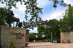 Illinois - Chicago - Lincoln Park Zoo