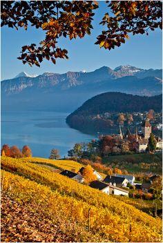 Spiez, Switzerland at Autumn.
