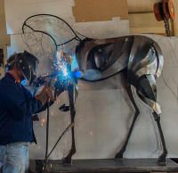 Welding the steel horse titled 'Black Stallion'.  The actual-size drawing is in the background.  The drawing helps in getting the correct profile, and in determining the shapes of each part. www.thesculpturestudio.com