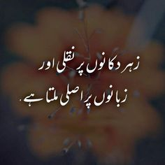 Zehar Zubano par Asali aur Dukano par Nakli Milta Urdu Pic The post Zehar Zubano. - Zehar Zubano par Asali aur Dukano par Nakli Milta Urdu Pic The post Zehar Zubano par Asali aur Duka - Urdu Funny Poetry, Poetry Quotes In Urdu, Best Urdu Poetry Images, Urdu Poetry Romantic, Love Poetry Urdu, Romantic Love Quotes, Deep Poetry, Inspirational Quotes In Urdu, Urdu Quotes Islamic